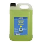Protect.Ruitenreiniger zomer 5L Protect 1850613