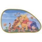 Disney Disney Winnie the Pooh Zonnescherm hatchback 12877