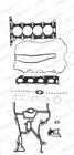 Cilinderkop pakking set/kopset Payen ch5031