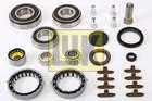 Reparatieset versnellingsbak Luk 462021110