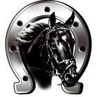 Mijnautoonderdelen AutoTattoo Horse + Horseshoe 6x7cm AV 124025