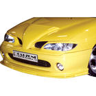 Carzone Specials SportGrill RE Megane Fase I 95-99 CZ 110700