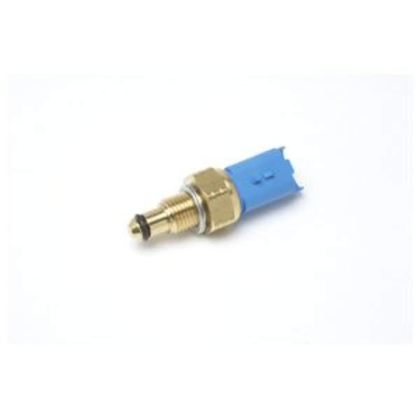 Delphi Diesel Brandstoftemperatuur sensor 9307-529A