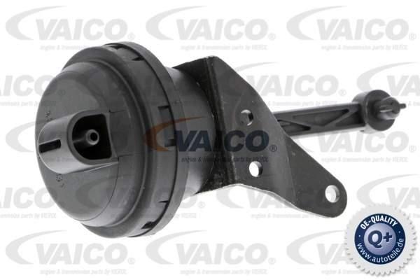 Vaico Onderdrukbediende klep EGR V10-3668